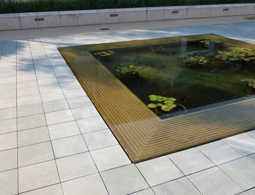 Water Feature and Pond Service