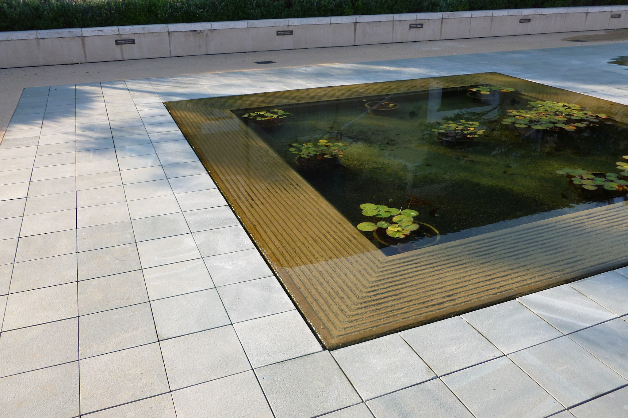 Water feature and pond service facility services for Pond service